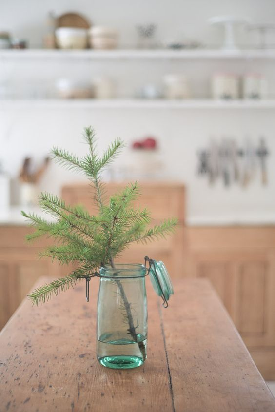 tree in jar